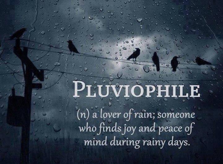 plyviophile